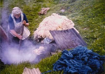 Raw fleece in the boiling dyepot